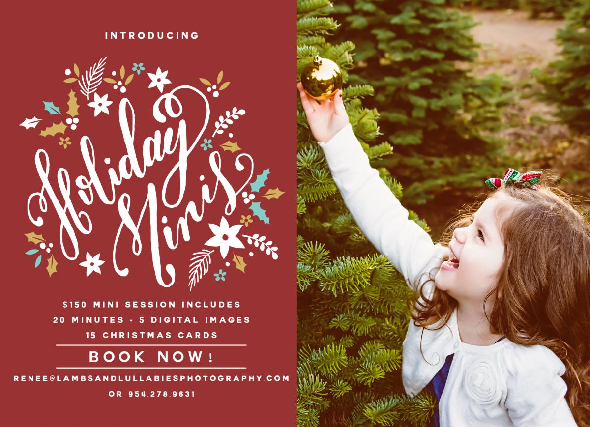 introducing christmas and holiday 2014 mini